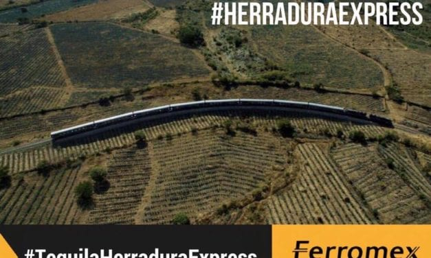 Relanzan recorrido del Tren Tequilero Herradura Express
