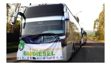 Busca UNAM producir biocombustibles con microalgas