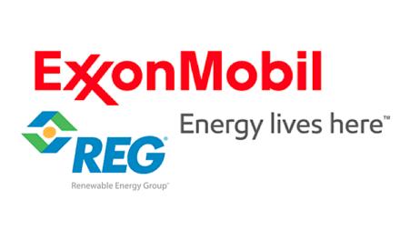 Avanzan investigaciones de ExxonMobil sobre biodiesel