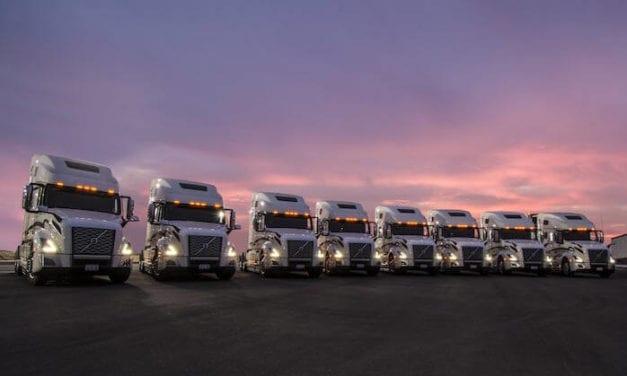 14 camiones Volvo para Autotransportes Alanis