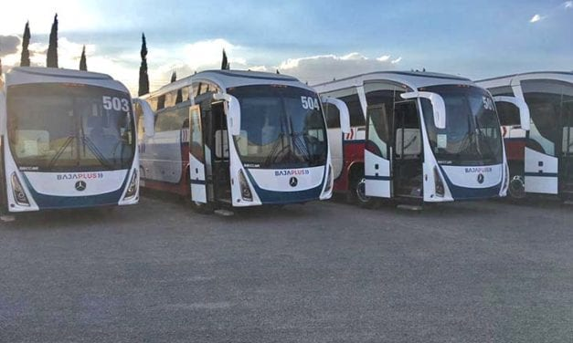 Autobuses Mercedes-Benz recorrerán Tijuana