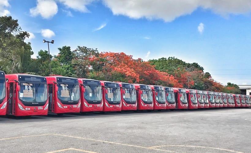 Nuevos autobuses Torino circularán en rutas exprés de Cancún