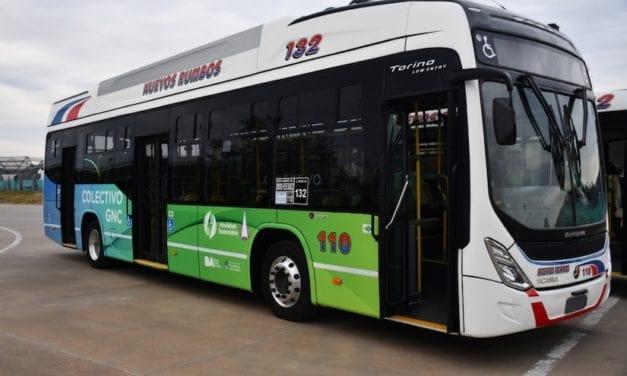 Desarrolla Marcopolo autobús GNV con Scania