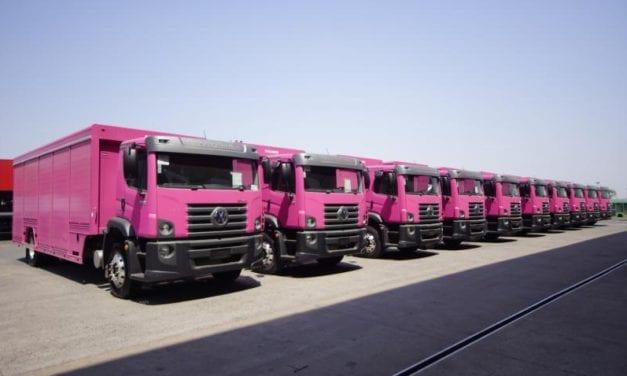 Flota de Constellation color rosa va a Colombia