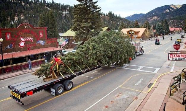 Un #T680 de Kenworth transportará el árbol de Navidad al Capitolio