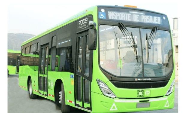 Calidad Marcopolo en autobuses RTP