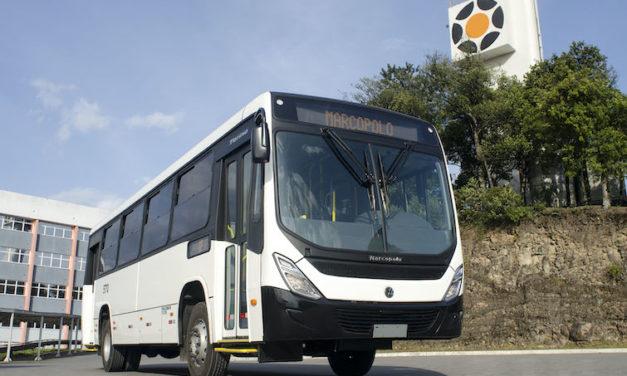Exporta Marcopolo 130 autobuses con solución BioSafe