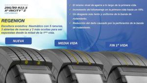 Michelin Regenion Magazzine del Transporte