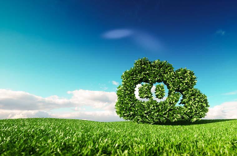 Brambles alcanza la neutralidad de carbono