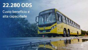 Nuevos modelos de la familia Volksbus
